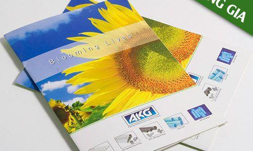 Ưu điểm của việc thiết kế – in ấn catalogue chất lượng